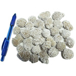 Mineral and Fossil Treasures - Desert Rose (Size 1) (30 pcs)