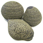 Pyrite Concretions