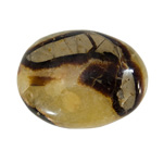 Palm Stone - Septarian