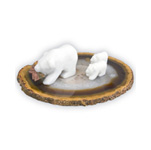 Spirit Bear Family on Agate