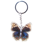 Insect Keychains - Blue Butterfly