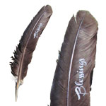 Zenature Smudging Feather - Blessings