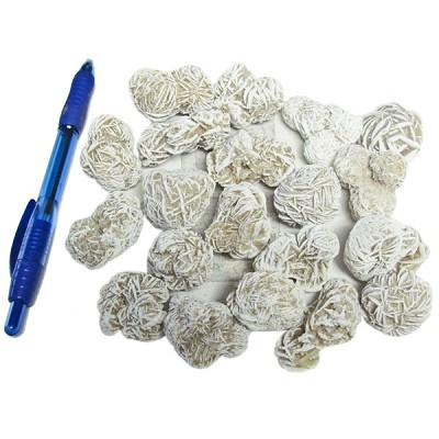 Mineral and Fossil Treasures - Desert Rose (Size 2) (20 pcs)