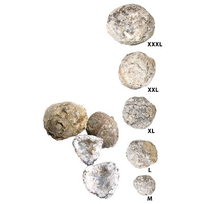 Discovery Geodes - Extra Large (25)