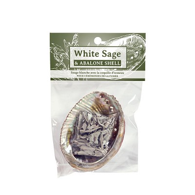 Zenature White Sage and Abalone Shell Set (3)