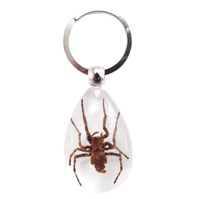 Insect Keychains - Spider (3)