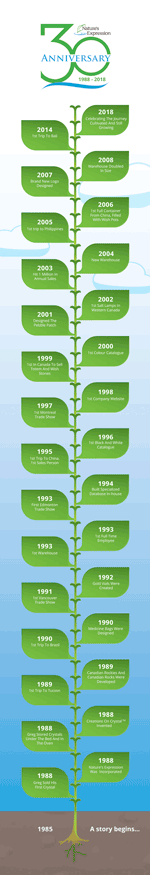 30th Anniversary Timeline - Click to view Infographic