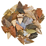 Mineral and Fossil Treasures - Jasper Arrowheads (Size 1) (50 pcs)
