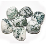 Tumbled Stone - Tree Agate (1 lb)