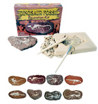 Dig-it-out Kit - Dinosaur Fossil in Clay (8)