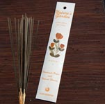 Natures Garden Incense Sticks - Cinnamon (5)