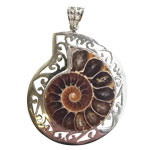 Ammonite Pendant with Filligree Edge