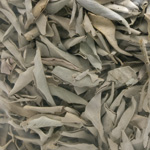 White Sage Loose - Bulk Unpackaged (10 lb)