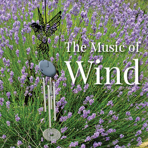Sounds of Wind