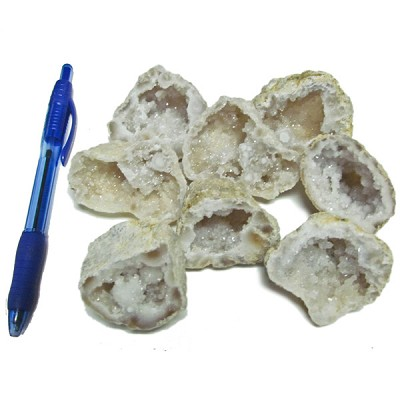 Mineral and Fossil Treasures - Agate Geodes (Size 3) (8 pcs)