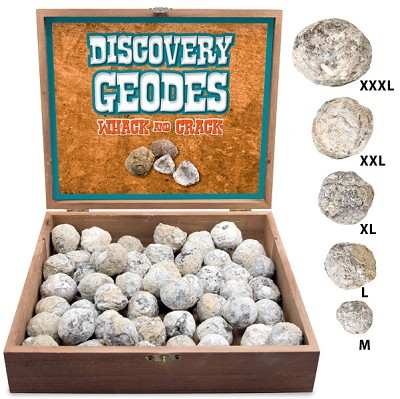Discovery Geode Display - XXLarge (50/display)