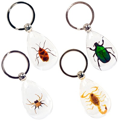 Insect Keychains - Assorted (12)