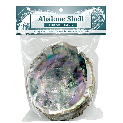 Abalone Shell - Natural Medium (Packaged)