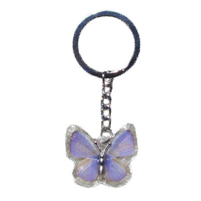 Insect Keychains - Purple Butterfly